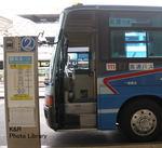 PA100017-1.jpg