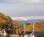 kazMyogi-Nov 026-1.jpg