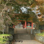 kazMyogi-Nov 038-1.jpg