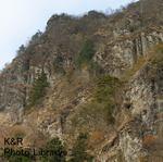 kazMyogi-Nov 076-1.jpg