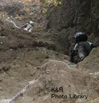 kazMyogi-Nov 101-1.jpg