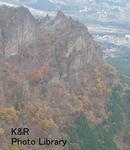 kazMyogi-Nov 109-1.jpg