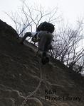 kazMyogi-Nov 122-1.jpg