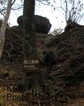 kazMyogi-Nov 218-1.jpg