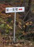 kazMyogi-Nov 230-1.jpg
