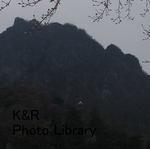 kazMyogi-Nov 257-1.jpg