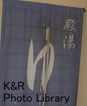 kazMyogi-Nov 297-1.jpg