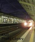 kazMyogi-Nov 564-1.jpg