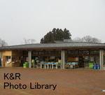 kazNasu-Jan 141-1.jpg
