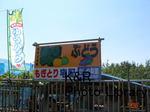 kazetc-Aug2 012-1.jpg