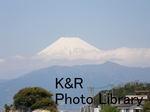 rieShishi-Aprl 033-1.jpg
