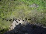 rieShishi-July 001-1.jpg